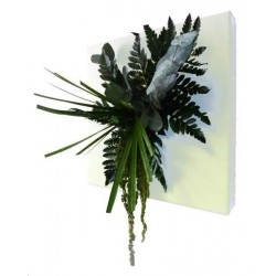 Tableau végétal stabilisé blanc ECO