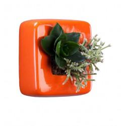 Cube en céramique orange avec une composition de 2 plantes vivantes