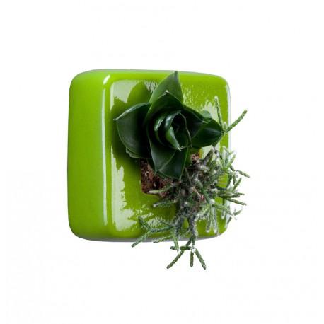 Carré vert en céramique avec une composition végétale