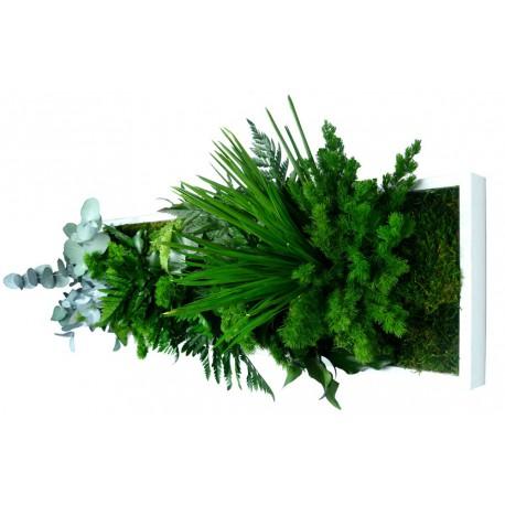 Tableau végétal panoramic