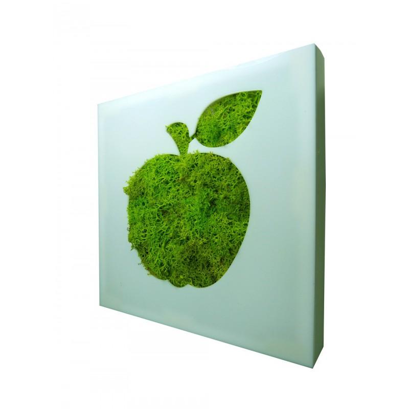 tableau vegetal pictogramme pomme. Black Bedroom Furniture Sets. Home Design Ideas