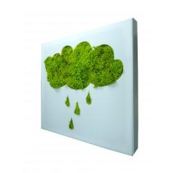 Tableau PICTO végétal stabilisé nuage