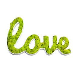 Decopatch LOVE en végétaux stabilisés