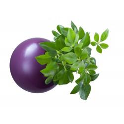 flowerball 12