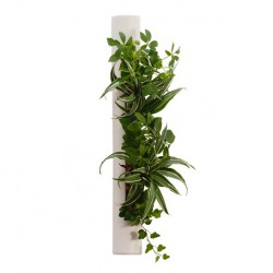 Flowertube blanc en céramique avec végétaux vivants