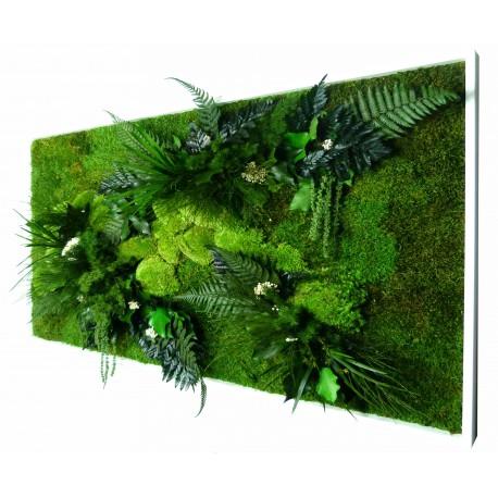 Tableau végétal stabilisé XL NATURE RECTANGLE