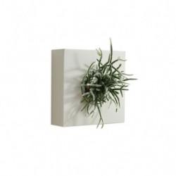Tableau végétal Classic FB1 blanc
