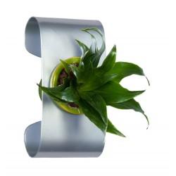 Support BEAN pour composition végétale Gris métal