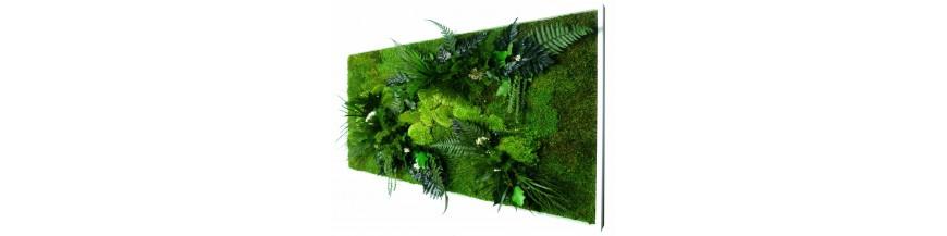 tableau vegetal stabilis web42. Black Bedroom Furniture Sets. Home Design Ideas